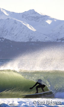 Surfing Alaska photo - Cold water and snow covered mountains