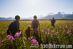 Hikers in Halo Bay, Katmai National Park.
