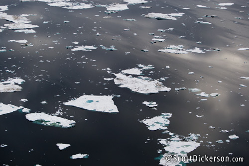 Aerial photo of melting Arctic ice floes in the Chukchi Sea, Alaska. This disappearing sea ice is important habitat for polar bears.