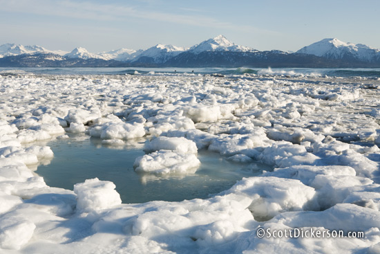 Photo of ice packed against the beach at a surf break in Homer, Alaska during winter.