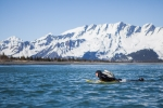 Surf adventure Alaska, Scott Dickerson Photography